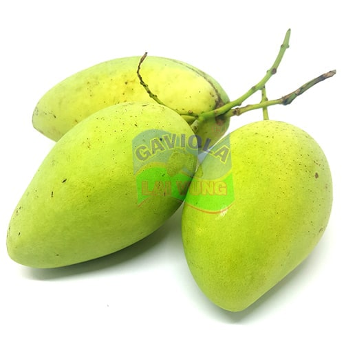 Xoài - Mango